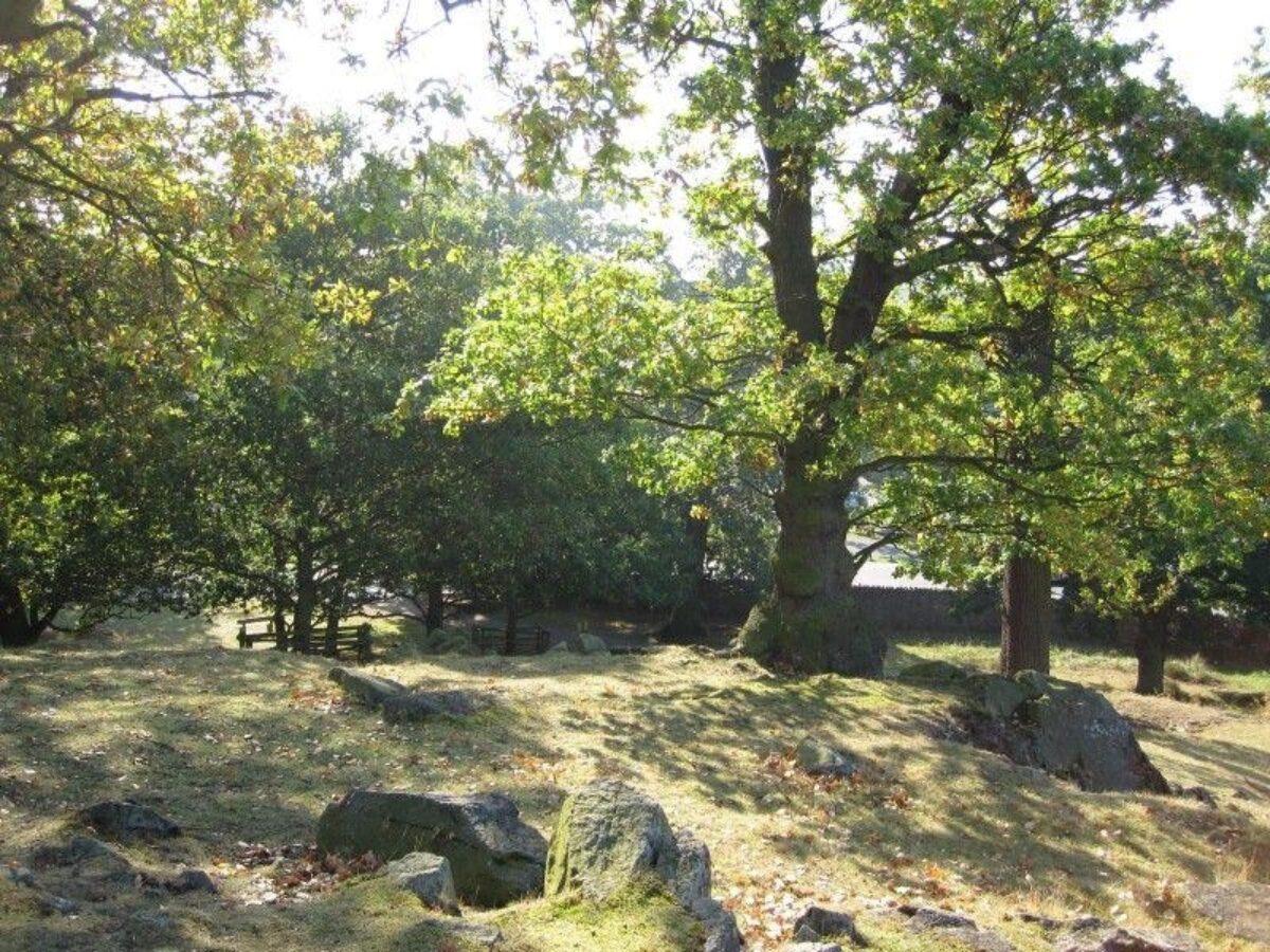 Bradgate Park large photo 4
