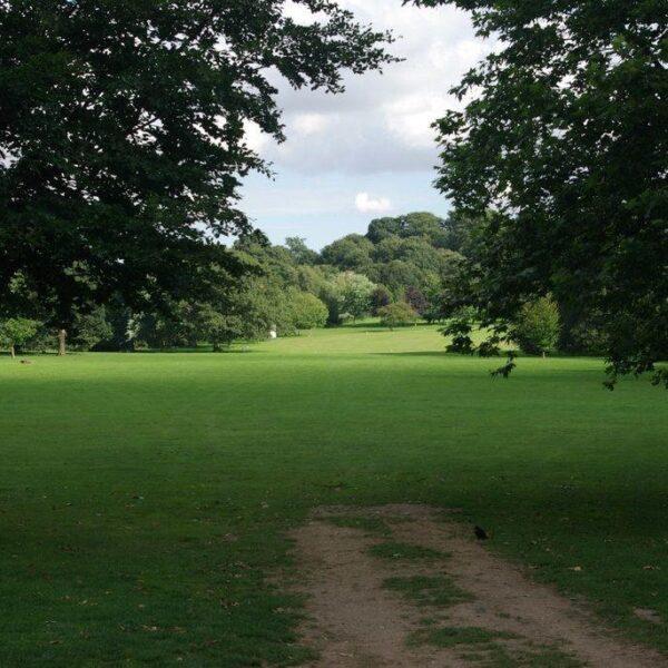 Dog walk at Bramcote Park