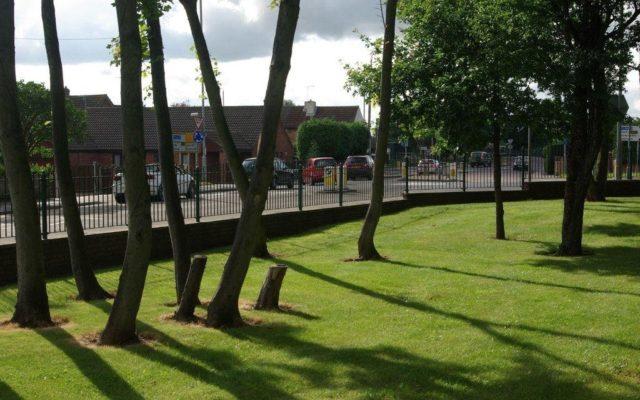 Bramcote Park Dog walk in Nottinghamshire