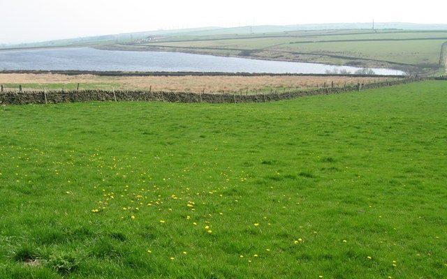 Broadstone Reservoir Dog walk in Yorkshire (West)
