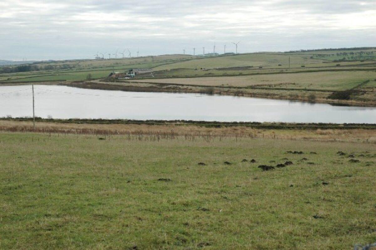 Broadstone Reservoir large photo 1