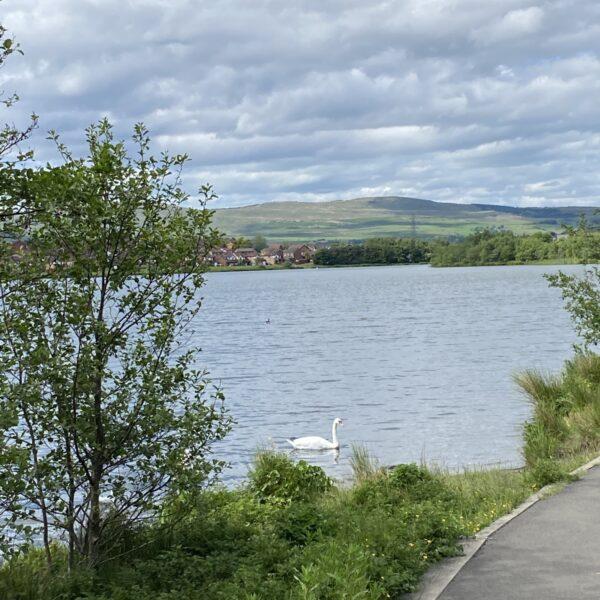 Broadwood Loch photo 2