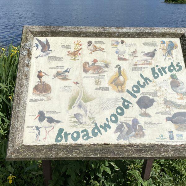 Broadwood Loch photo 12