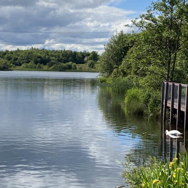 Broadwood Loch photo 9