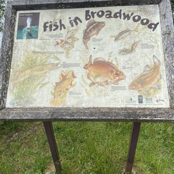 Broadwood Loch photo 4