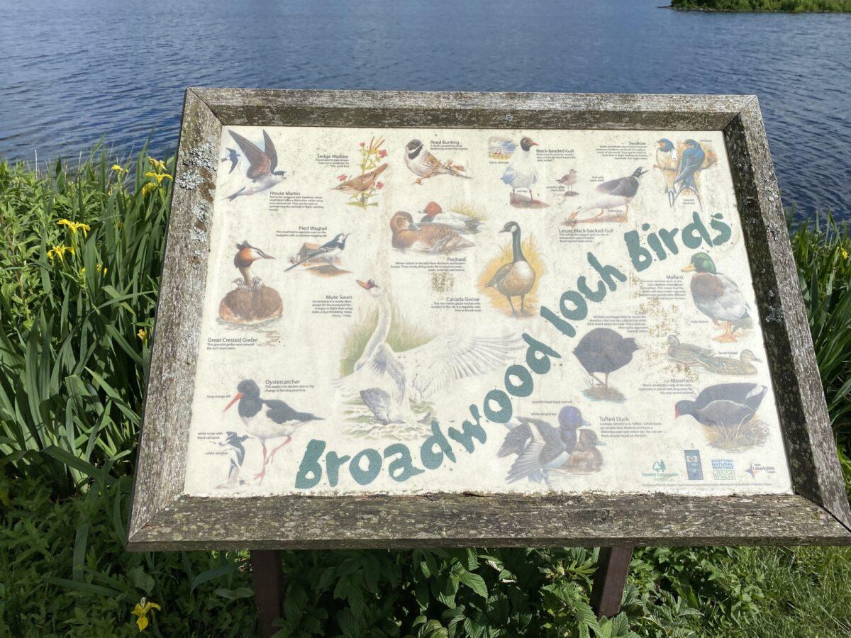 Broadwood Loch large photo 12