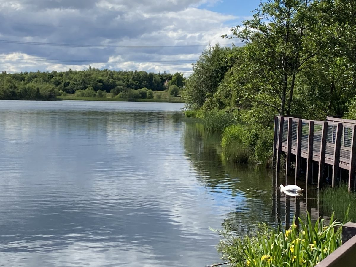 Broadwood Loch large photo 9