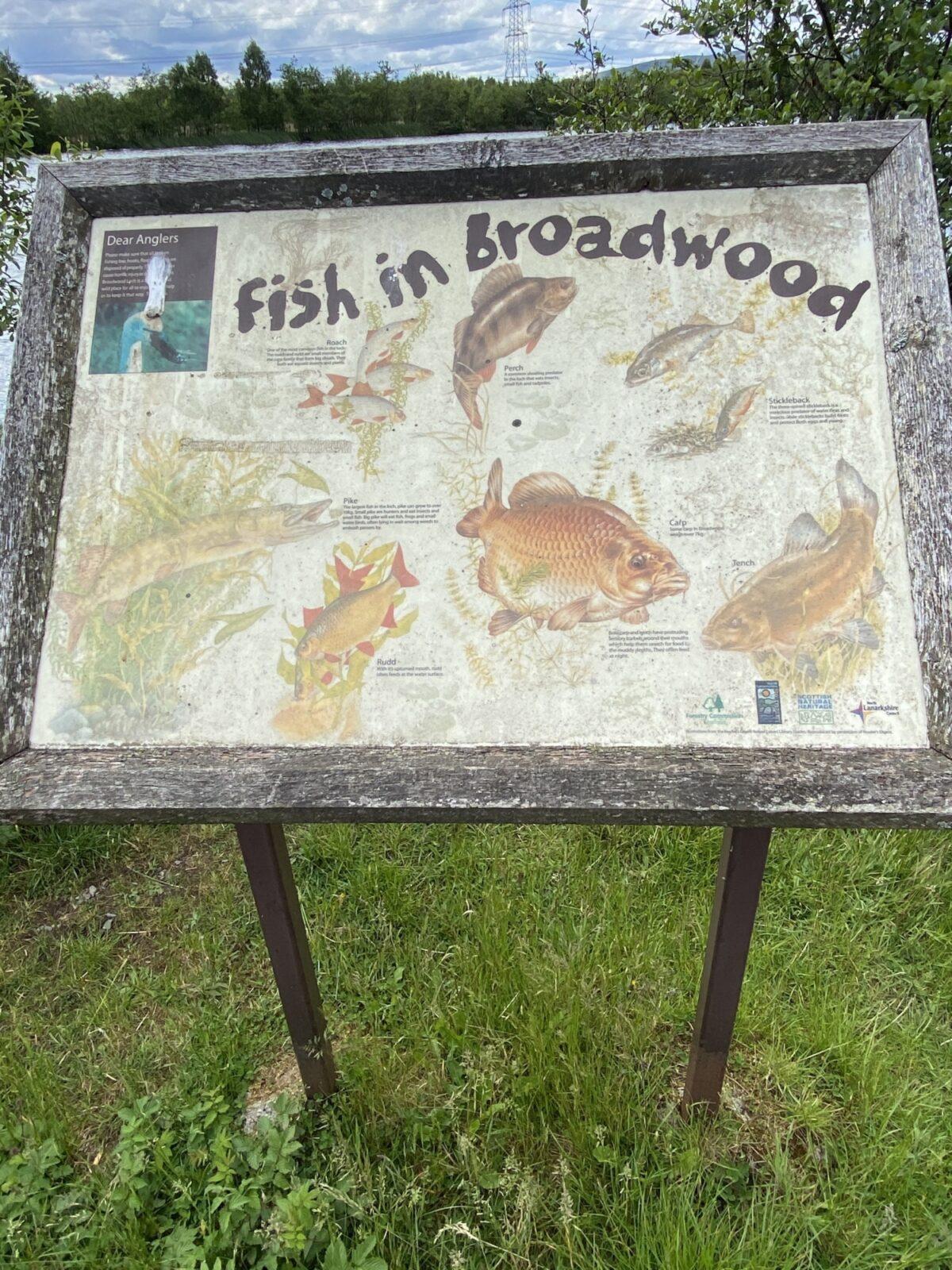 Broadwood Loch large photo 4