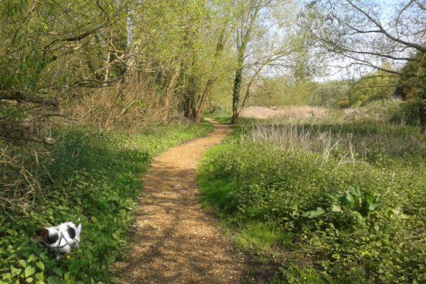 Brook Meadow Walk, Emsworthphoto