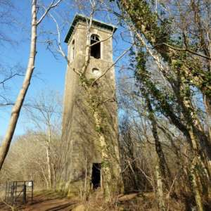 Browns Folly