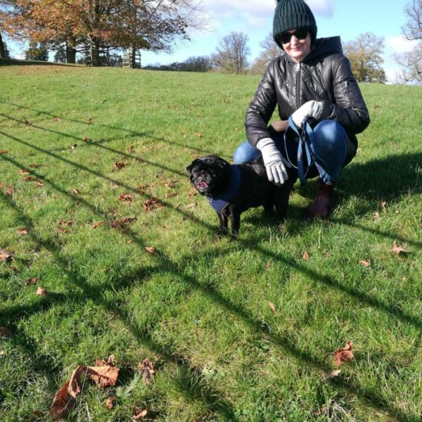 Dog walk at Burghley House