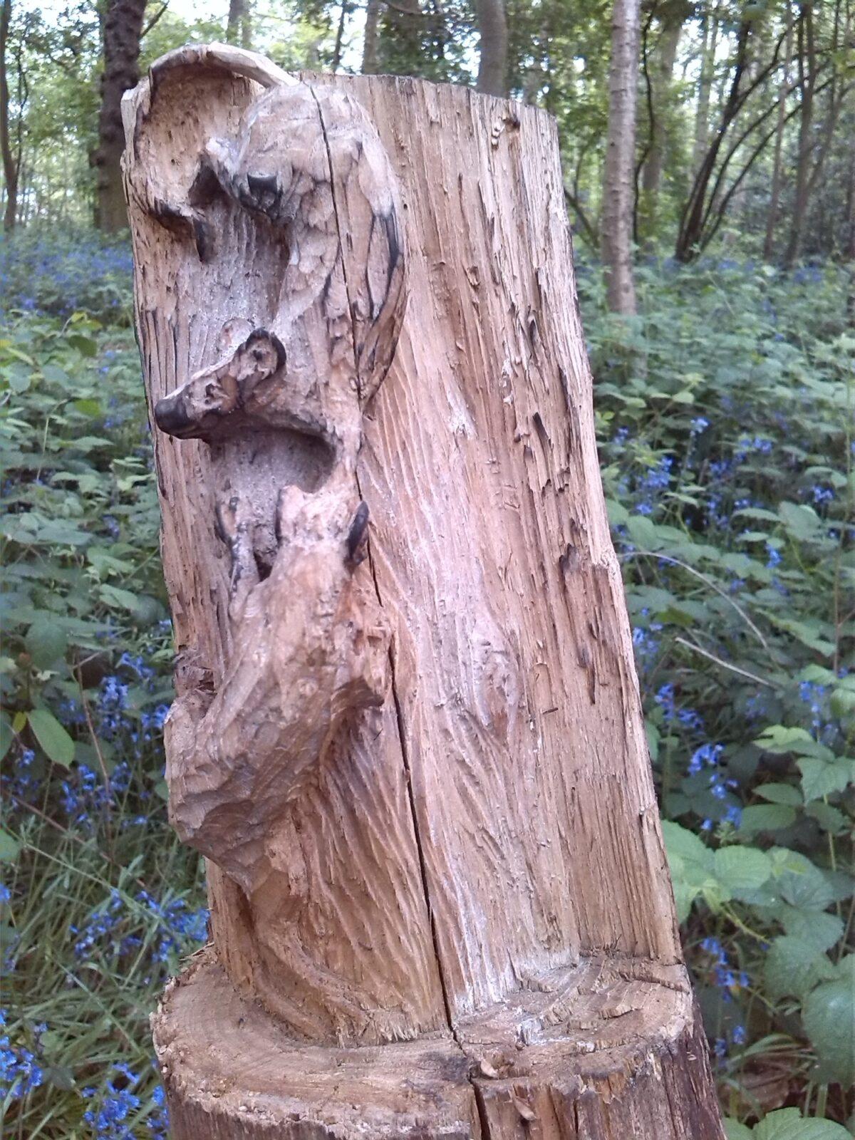 Bursted Woods large photo 1