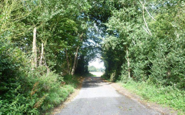 Camer Park Dog walk in Kent