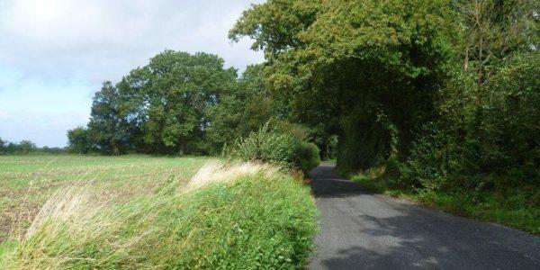 Jeskyns Country Park, Gravesend