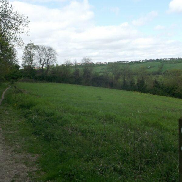 Capstone Farm Country Park photo 2