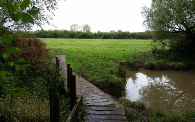 Carterton Medows Dog walk in Oxfordshire