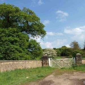 Castle Howard Arboretum