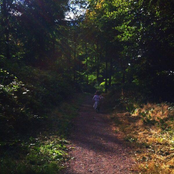 Dog walk at Castle Neroche