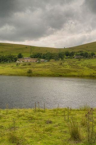 Dog walk at Castleshaw Reservoirs Walk, Delph, Heights Circular photo