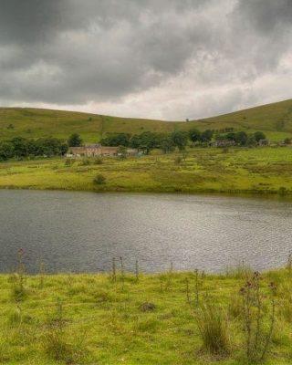 Dog walk at Castleshaw Reservoirs Walk, Delph, Heights Circular