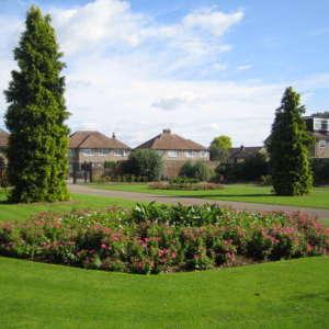 Cedars Park