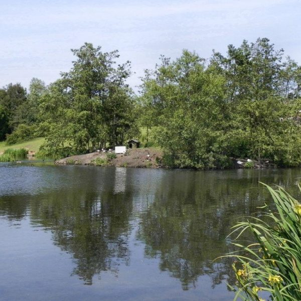 Chadwick Dam photo 4
