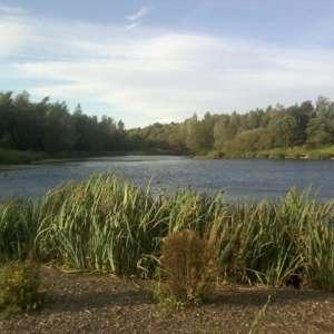 Chadwick Dam