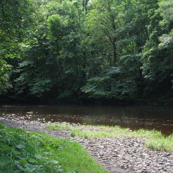 Chatelherault Country Park photo 2