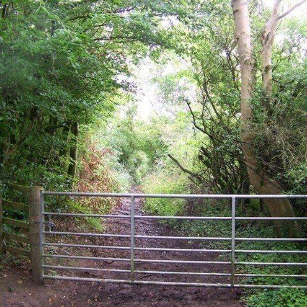 Chatelherault Country Park photo 3