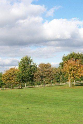 Dog walk at Chatelherault Country Park photo