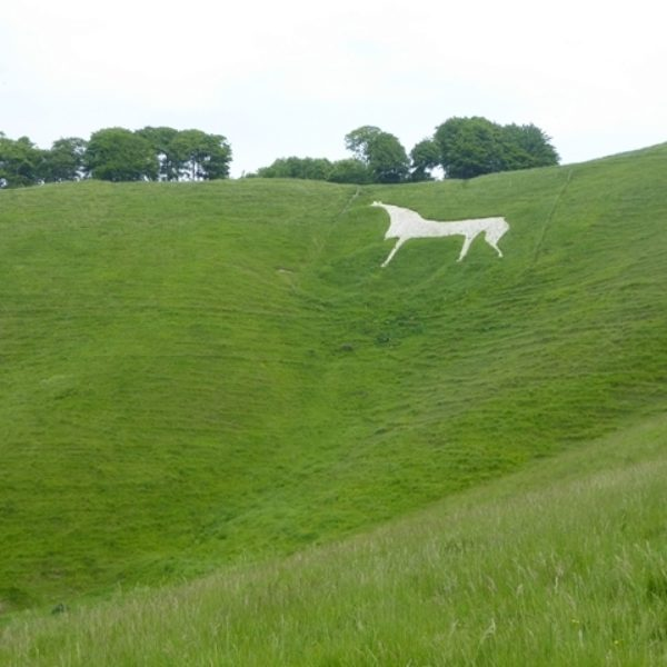 Dog walk at Cherhill White Horse