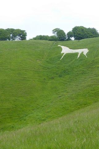 Dog walk at Cherhill White Horse photo