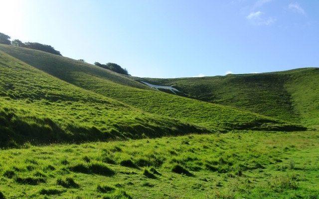 Cherhill White Horse Dog walk in Wiltshire