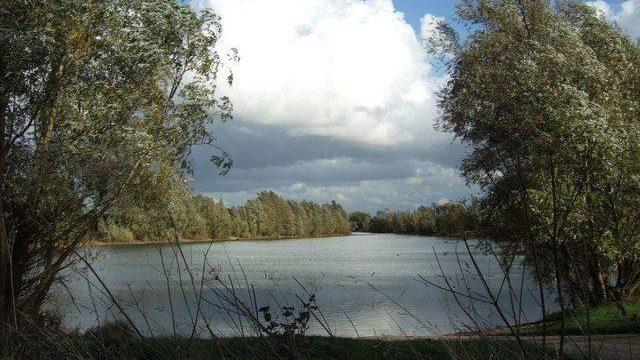 Dog walk at Chivers Lake