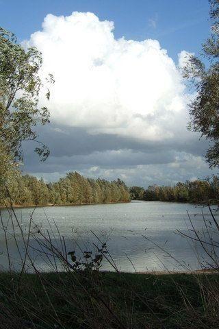 Dog walk at Chivers Lake photo