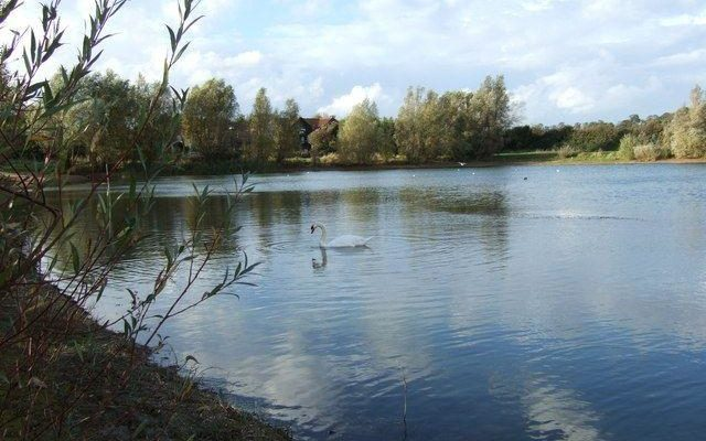 Chivers Lake Dog walk in Cambridgeshire