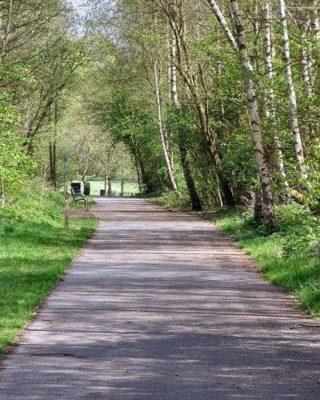 Dog walk at Clayton Vale & River Medlock