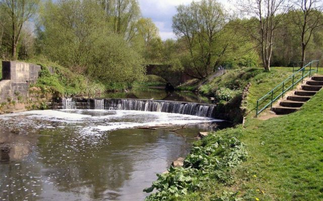 Clayton Vale & River Medlock Dog walk in Manchester (Greater)