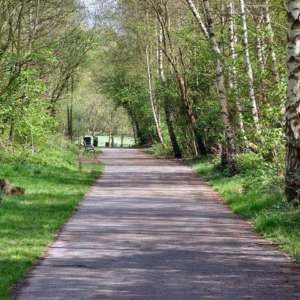 Clayton Vale & River Medlock