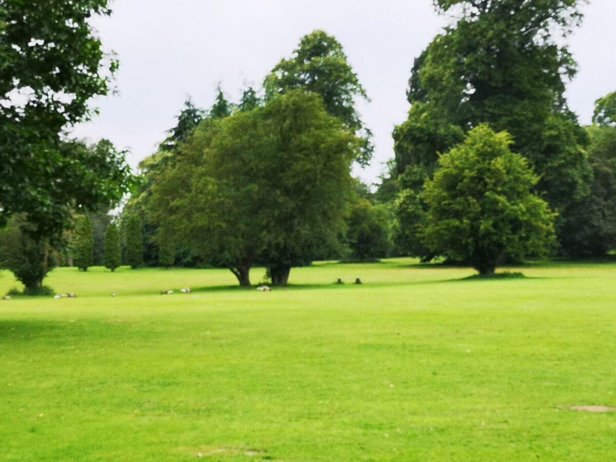 Clumber Park large photo 1