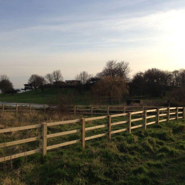 Dog walk at Coalhouse Fort Park