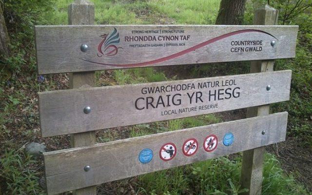 Coed Craig Yr Hesg Dog walk in Rhondda Cynon Taff