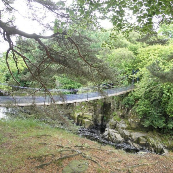 Dog walk at Coldberry And Low Force