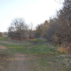 The Commons Nature Reserve, Welwyn Garden City