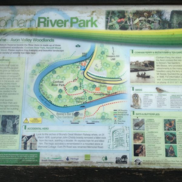 Dog walk at Conham River Park & Avon River Trail