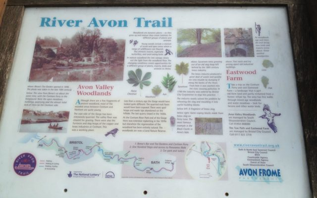 Conham River Park & Avon River Trail Dog walk in Bristol (City of)