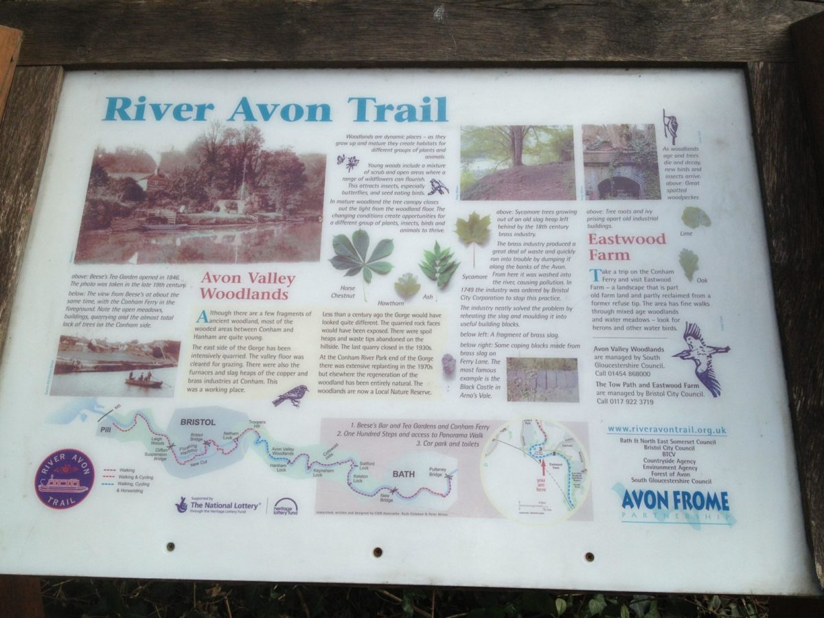 Conham River Park & Avon River Trail large photo 5
