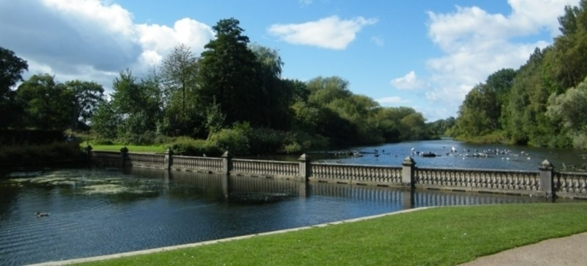 Coombe Abbey Country Park large photo 4