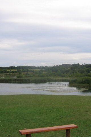 Dog walk at Cosmeston Lakes photo