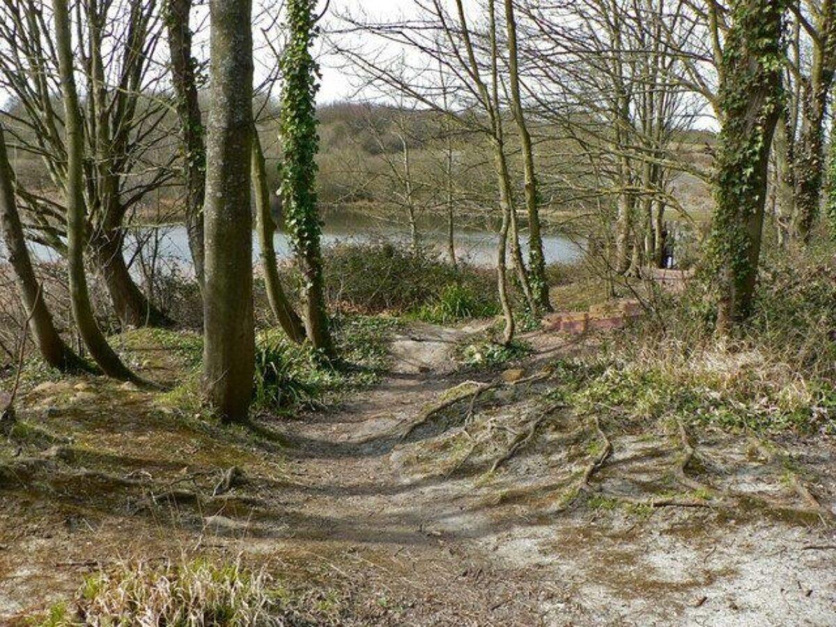 Cosmeston Lakes large photo 2